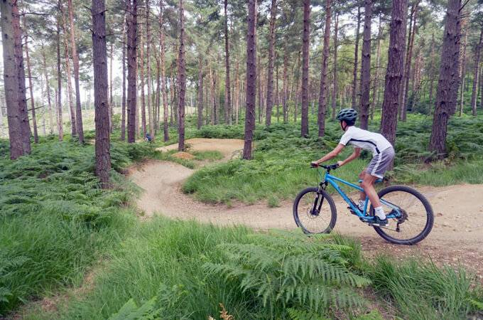 Swinley Forest Mountain Bike Centre